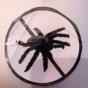 No Tarantula Sticker